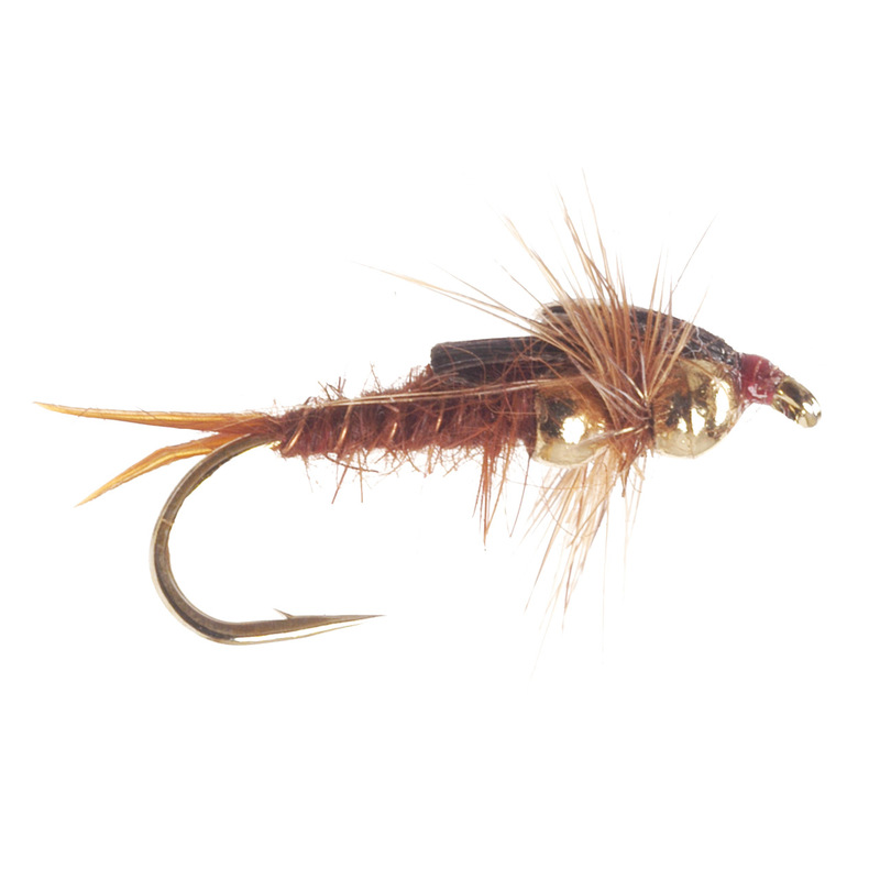 Tunghead Double Bead Stonefly Nymph Brown | Free Ground Shipping