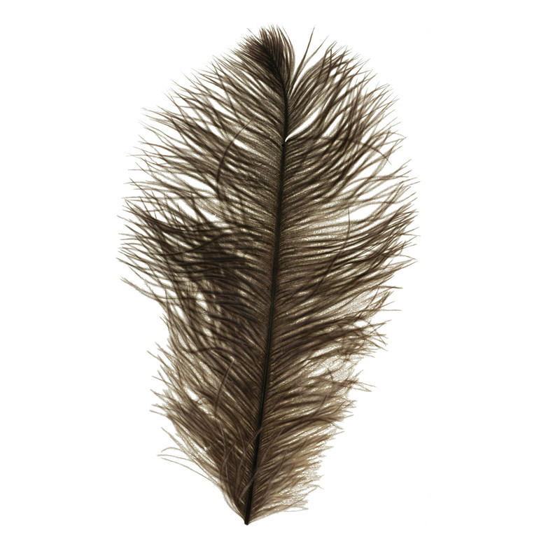 A Wapsi Ostrich Plume in the Color Natural Gray