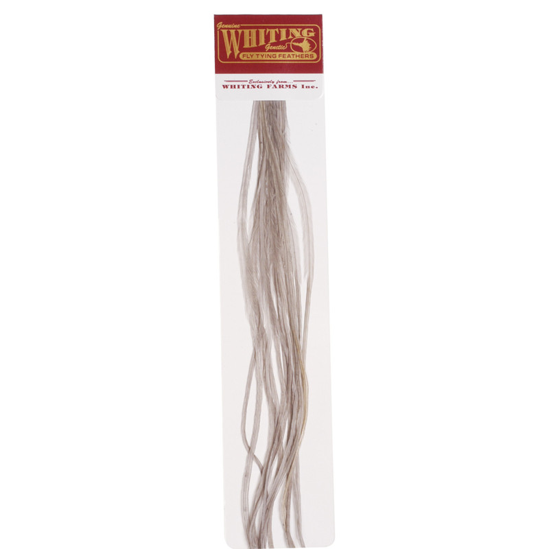 A 100 Pack of Whiting Saddle Hackle in the Color Medium Dun