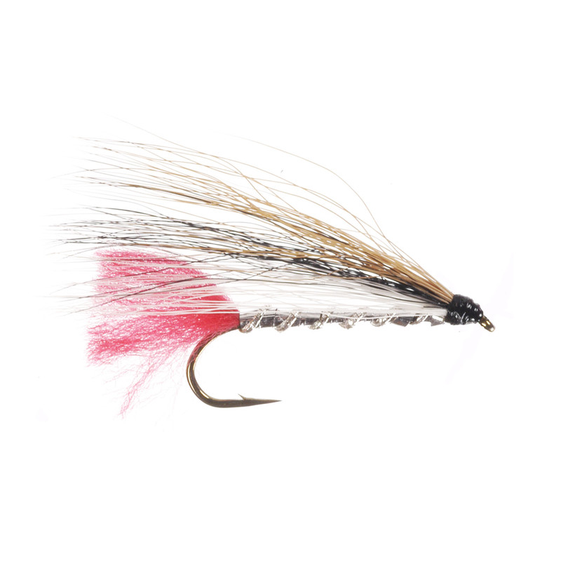 Black Nose Dace Streamer