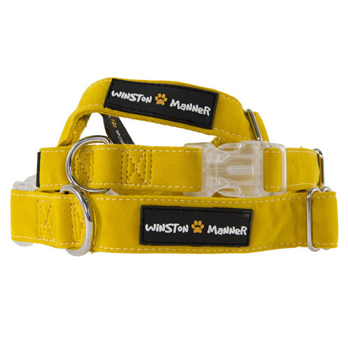 Golden Yellow Dog Collar