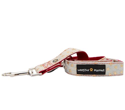 Starry Night Dog Leash