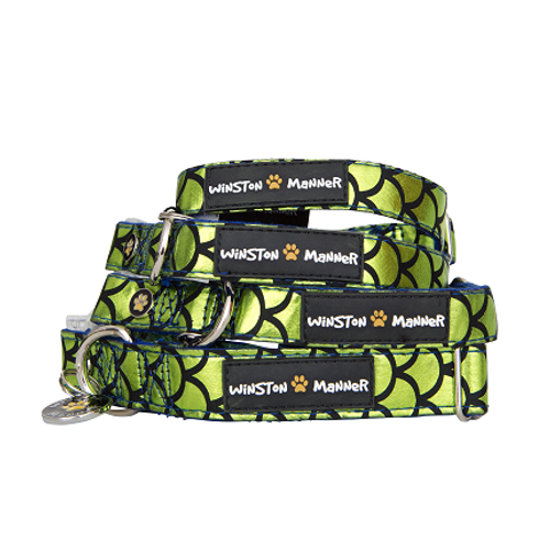 Green Atlantis Dog Collar