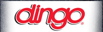 dingo-image.jpeg