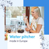Dafi Omega Standard LED Filtering Water Pitcher 16 Cup Made in Europe BPA Free