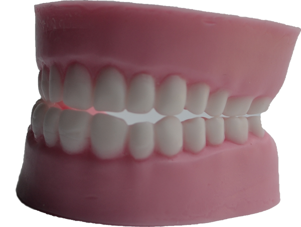 Teeth Soap