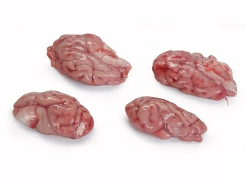 Picture of four Pork brains