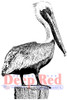 Pelican Cling Stamp by Deep Red Stamps