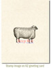 Wooly Sheep Rubber Cling Stamp by Deep Red Stamps shown on A2 card