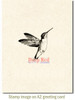 Hummingbird Rubber Cling Stamp by Deep Red Stamps shown on A2 card