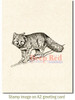 Winter Fox Rubber Cling Stamp by Deep Red Stamps shown on A2 card