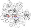 Apple Blossoms Rubber Cling Stamp by Deep Red Stamps
