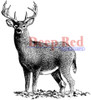 Buck Deer Rubber Cling Stamp by Deep Red Stamps