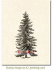 Spruce Tree Rubber Cling Stamp by Deep Red Stamps shown on A2 card