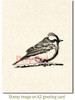 Vermilion Flycatcher Rubber Cling Stamp by Deep Red Stamps shown on A2 card