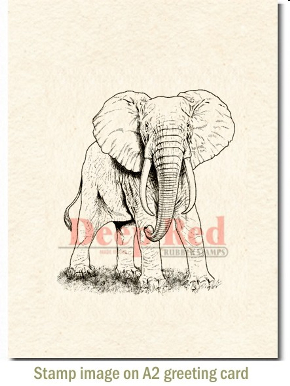 Deep Red Stamps Zebra Rubber Cling Stamp