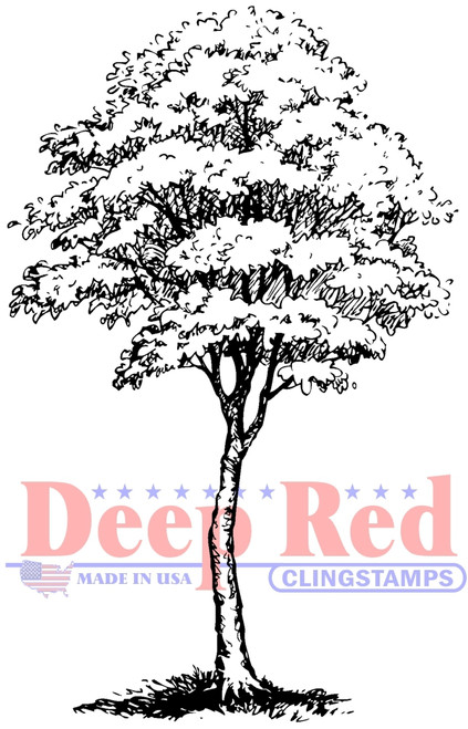 Cottonwood Tree Cling Stamp by Deep Red Stamps