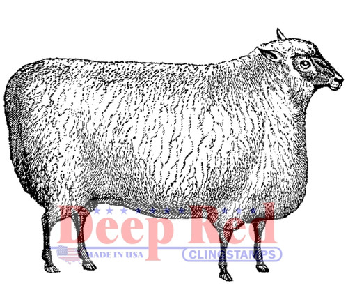 Wooly Sheep Rubber Cling Stamp by Deep Red Stamps