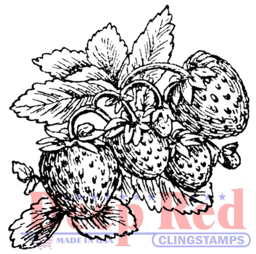 Strawberries Rubber Cling Stamp by Deep Red Stamps