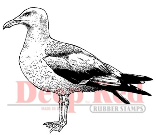 Seagull Rubber Cling Stamp by Deep Red Stamps