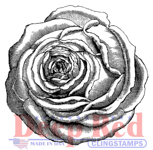 Rose Engraving Rubber Cling Stamp by Deep Red Stamps