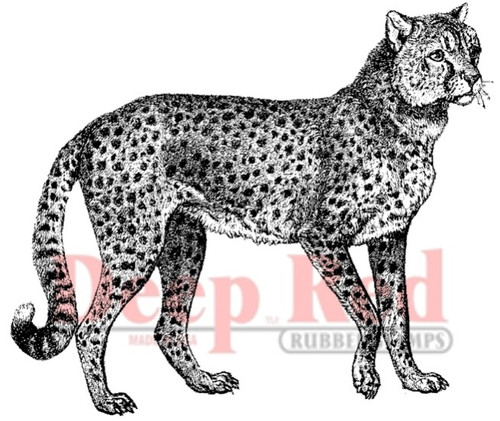 Cheetah Rubber Cling Stamp by Deep Red Stamps
