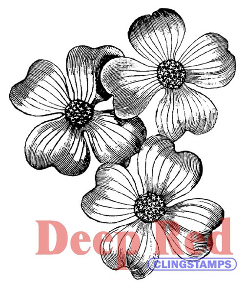 Dogwood Flowers Rubber Cling Stamp by Deep Red Stamps shown