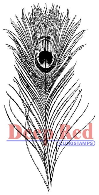 Peacock Feather Rubber Cling Stamp by Deep Red Stamps