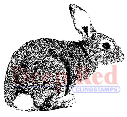 Bunny Rabbit Rubber Cling Stamp by Deep Red Stamps