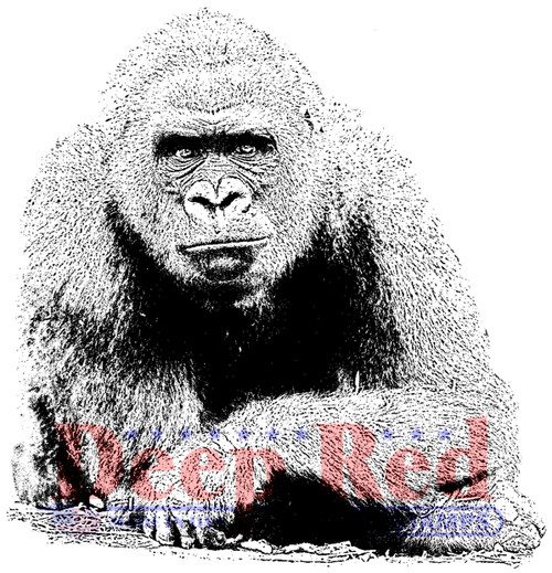 Gorilla Rubber Cling Stamp by Deep Red Stamps