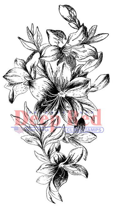 Lily Cascade Rubber Cling Stamp by Deep Red Stamps