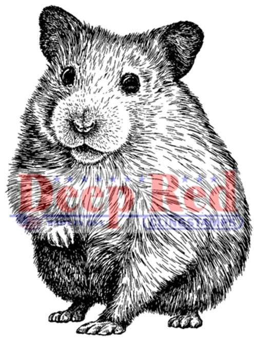 Hamster Rubber Cling Stamp by Deep Red Stamps