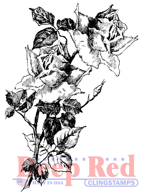 Roses Pen and Ink Rubber Cling Stamp by Deep Red Stamps