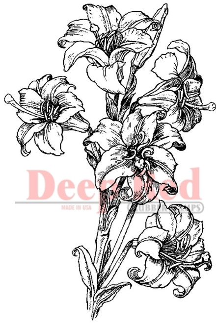 Lilies Pen and Ink Rubber Cling Stamp by Deep Red Stamps