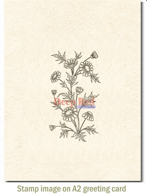 Wildflowers Rubber Cling Stamp by Deep Red Stamps shown on A2 card