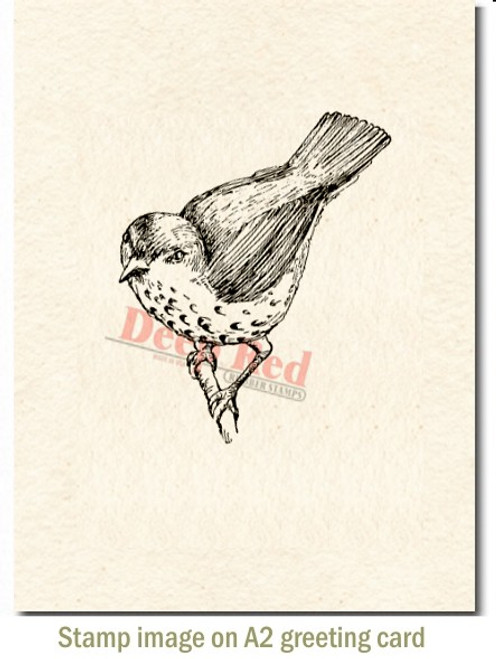 Springtime Sparrow Rubber Cling Stamp by Deep Red Stamps shown on A2 card