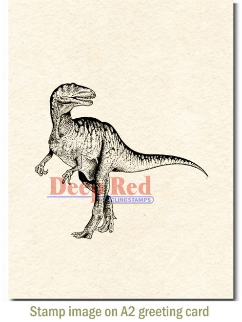 Raptor Dinosaur Rubber Cling Stamp by Deep Red Stamps shown on A2 card