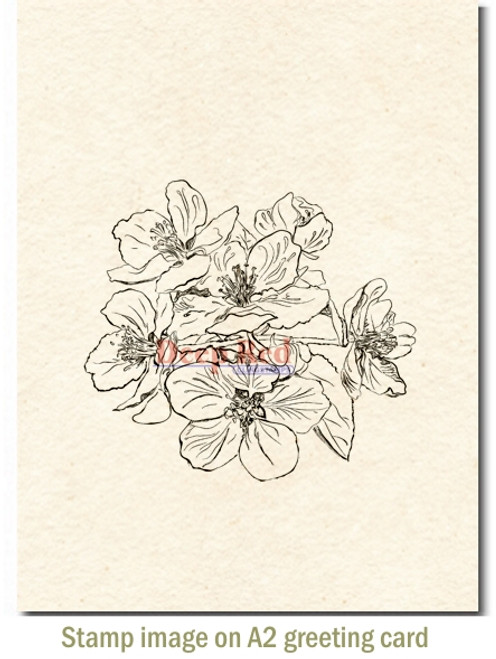 Apple Blossoms Rubber Cling Stamp by Deep Red Stamps shown on A2 card