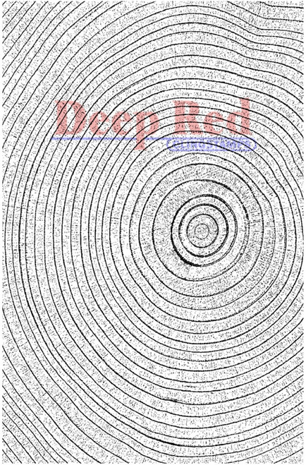 Tree Rings Rubber Cling Stamp