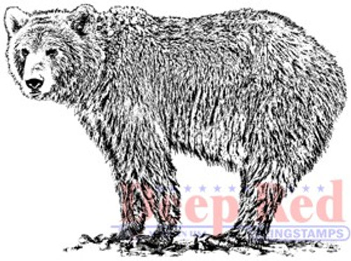 Deep Red Stamps Grizzly Bear Rubber Cling Stamp