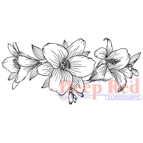 Lily Border Rubber Cling Stamp by Deep Red Stamps
