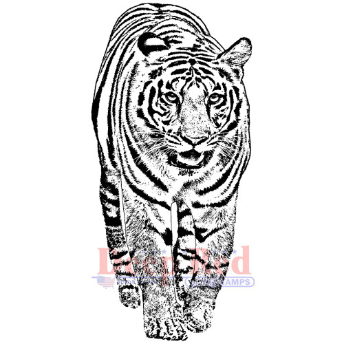 Bengal Tiger Rubber Cling Stamp by Deep Red Stamps