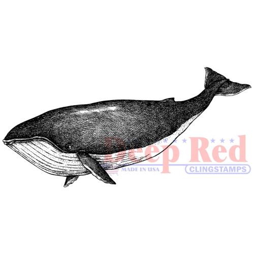 Whale Rubber Cling Stamp by Deep Red Stamps