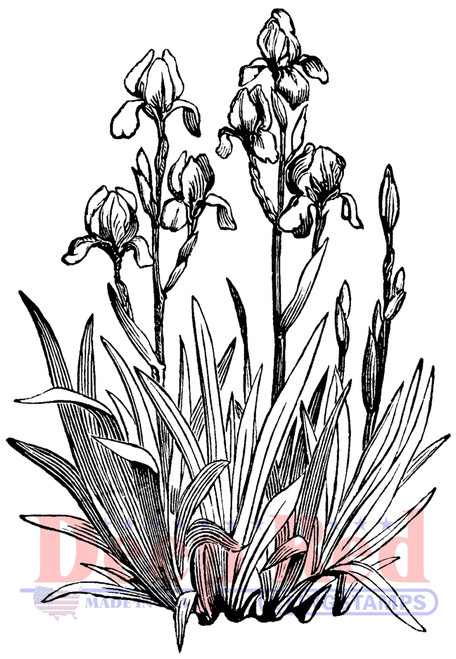 Iris in Bloom Rubber Cling Stamp by Deep Red Stamps