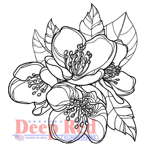 Magnolia Blossom Rubber Cling Stamp by Deep Red Stamps