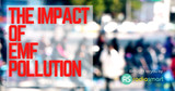 The Impact of EMF Pollution