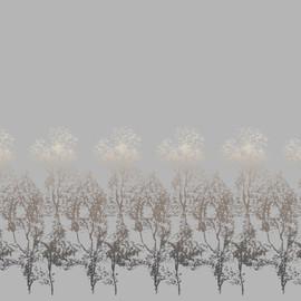 Arbor Ash