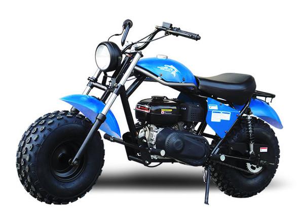 TrailMaster MB200