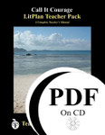 Call It Courage LitPlan Lesson Plans (PDF on CD)