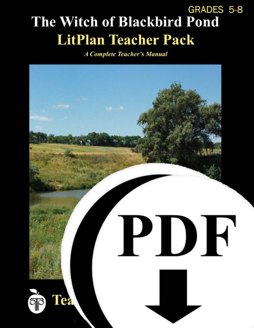The Witch of Blackbird Pond LitPlan Lesson Plans (Download)